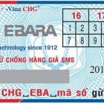 May Bom Ebara Chinh Hang